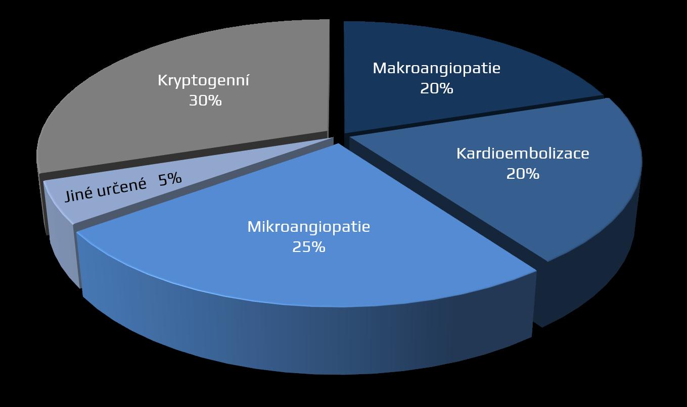TOAST klasifikace ischemických CMP